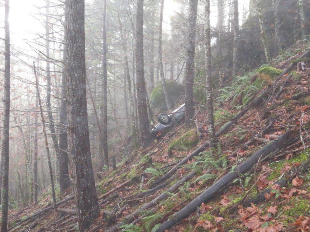 ФОТО. В США в лесной чаще нашли Porsche, угнанный и разбитый 25 лет назад