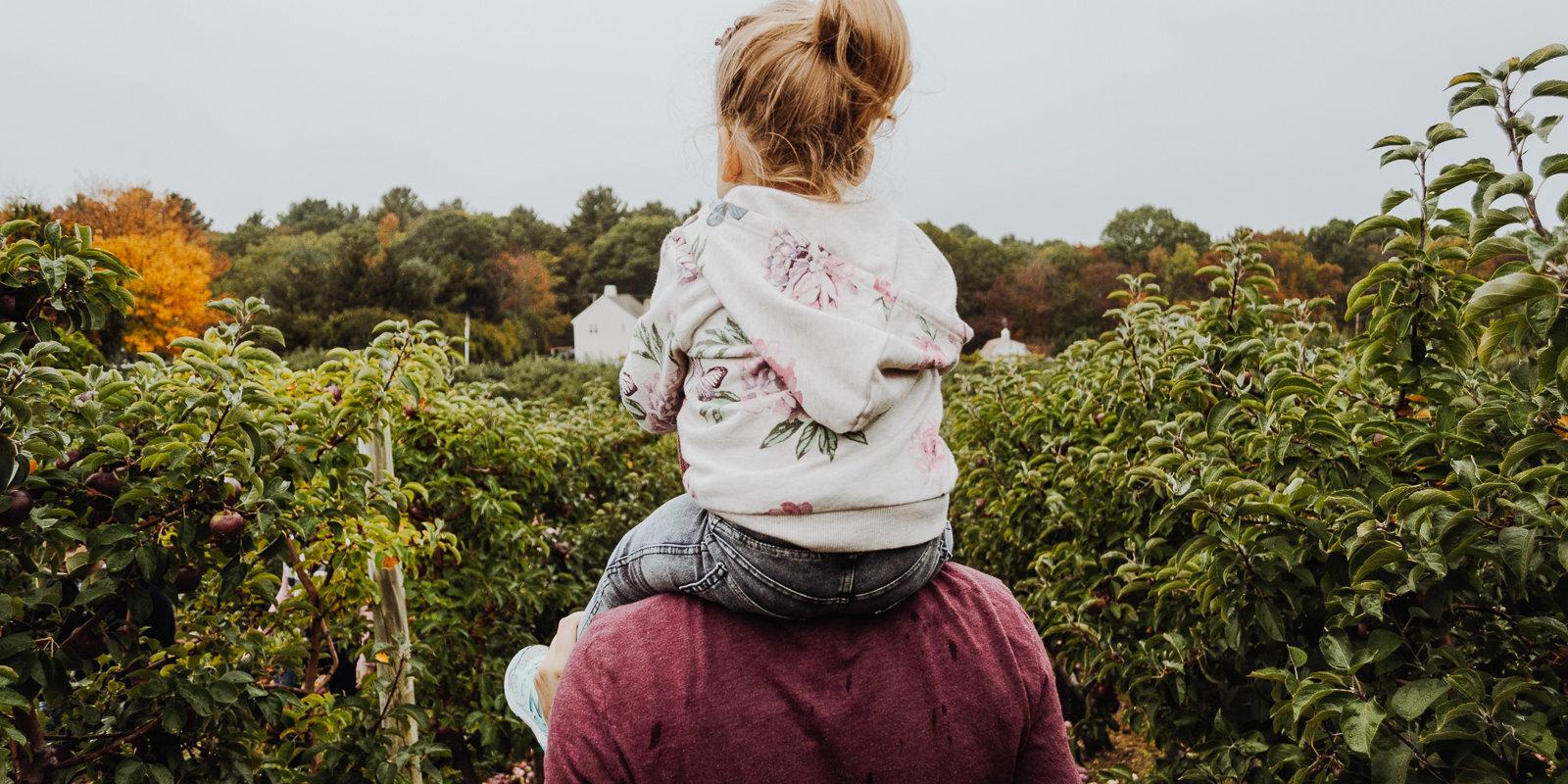 Šūpulī neieliktās prasmes: dzīvot bez tēta un mācīties par tādu būt