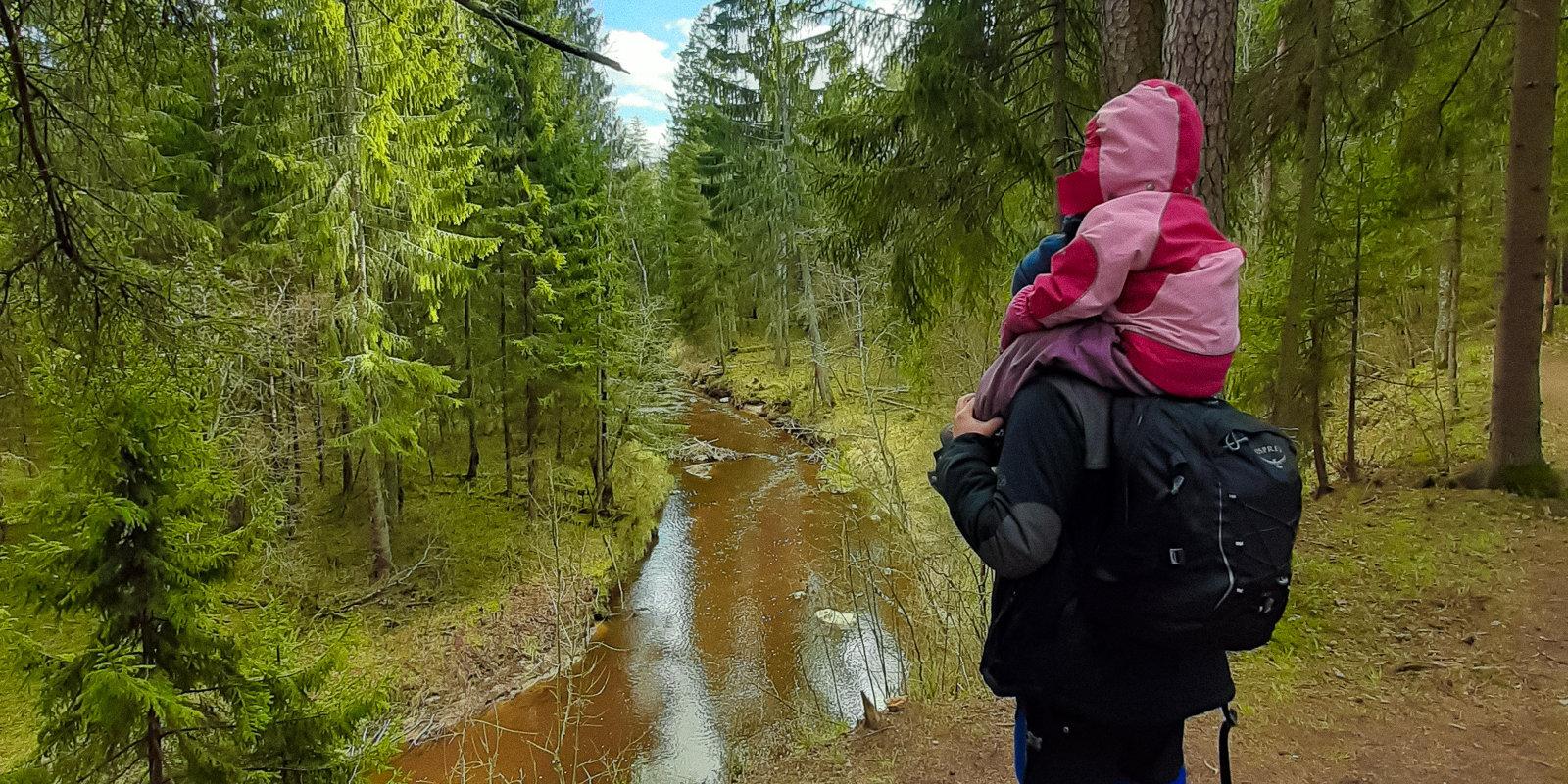 Bērns būs pārgājiena vadītājs. Tēta pieredze, ejot pie dabas ar trīsgadnieku