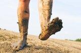 ВИДЕО: В Видземе крестьяне посадили картошку в разбитой дороге