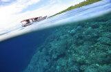 Юноша выжил после 49 дней скитаний на плавучей хижине в открытом море