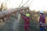 Sinoptiķi brīdina par spēcīgu vētru; Rīgā putenī ducinājis pērkons