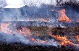 В Риге на лугах Спилве - крупный пожар