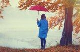 Синоптики: в пятницу ожидается переменная облачность, возможны дожди