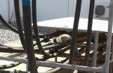 Неосторожная обезьяна оставила без света всю Кению