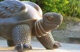 Grib izsolē pārdot Jūrmalas neoficiālo simbolu – bronzas 'Bruņurupuci'