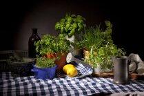 piparmētras, piparmētru audzēšana, kā audzēt piparmētras