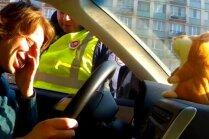Runājošs kāmītis izsmej krievu ceļu policistu