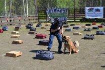 VID Muitas pārvaldes dienesta suņi uzvar narkotisko vielu meklēšanas sacensībās Karēlijā
