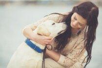 Suns Anglijā, saimnieki Latvijā. Speciālisti skaidro, vai čipētu dzīvnieku saimniekus atrod ātrāk
