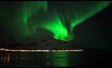 Norvēģijā iemūžināts vienreizējs skats: vaļi rotaļājas ziemeļblāzmas gaismā