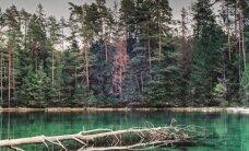 5 neparastas vietas, kas atrodamas tepat kaimiņos – Igaunijā