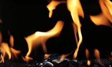 Asociācija: Latvijā pārdotās grila ogles neatbilst ES prasībām