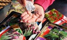 Семена: какие и сколько можно хранить без опаски