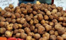 Аналитики: снижение НДС на латвийские фрукты и овощи - одно из глупейших решений за многие годы