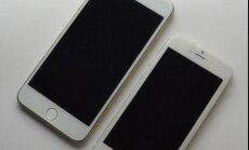 ASV slepkava tiek notverts pēc jautājuma 'iPhone' programmai par līķa paslēpšanu