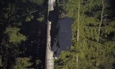 Kad mūziķi sēž kokos, bet dīvas mirdz mežā. Atskats uz festivālu 'Sansusī'