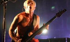 'Red Hot Chili Peppers' basģitārists: rokmūzika ir mirusi