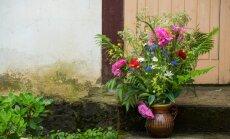 Papardes galda klājumā un pļavu puķes burkās – idejas svētku noskaņai