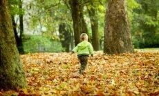 Pieci interesanti eksperimenti un uzdevumi bērniem pētniecisko prasmju attīstīšanai