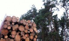 'Stora Enso Latvija' plāno ieguldīt 350 000 jaunā iekārtā energoefektivitātes uzlabošanai