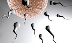Latvijā trūkst spermas un olšūnu donoru; augstskolās sāks kampaņu