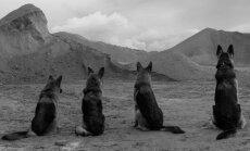 Goda seansā varēs noskatīties godalgoto Pakalniņas filmu 'Ausma'