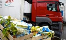 Polijas dārzeņu pieplūdums izspiedīs vietējos no veikalu plauktiem, uzskata eksperti