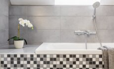 Košums vannasistabā – kā interjerā gaumīgi izvietot telpaugus