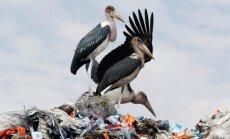 Kenijā aizliedz plastmasas maisiņus; pārkāpējiem draud cietumsods