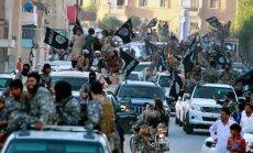 За два года убиты в боях около 45 тысяч боевиков ИГ