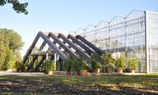 Kādreiz un tagad: virtuāla ekskursija Salaspils botāniskajā dārzā