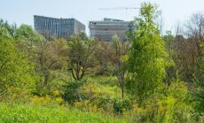 Jāuzlabo meliorācijas sistēma zem topošās LU studentu pilsētiņas, secina BVKB