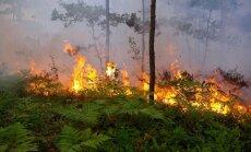 Из-за обширного пожара эвакуирован населенный пункт Стикли