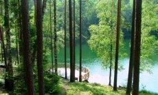 Smaragdzaļais Latgales Velnezers, kur neviens nepeldas un nedzīvo