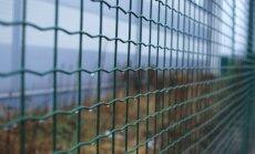 Lietuva sāk būvēt žogu gar robežu ar Krievijas Kaļiņingradas apgabalu
