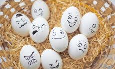 Balticovo обеспечит яйцами войска НАТО в Афганистане