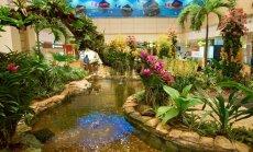 Stikla pienenes un 1000 tauriņu – pasaulē labākās lidostas neparastie dārzi
