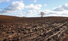 Латвия и соседние страны пережили крупнейший в ЕС спад сельхозпродукции
