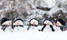 Cиноптики: в Латвию вернулись морозы, местами похолодало до -5 градусов