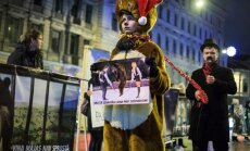 Foto: Protestē pret ieilgušo cietsirdību cirkā