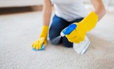 Kā pagatavot dabīgu līdzekli paklāju tīrīšanai?
