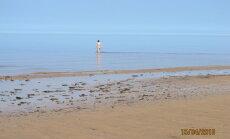 ФОТО ОЧЕВИДЦА: Первые купающиеся на пляже в Вецаки