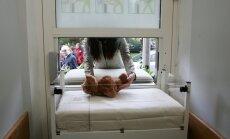 Gandrīz visiem Latvijas glābējsilītēs atstātajiem bērniem atrasti adoptētāji