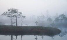 До Дня Лачплесиса - дождь и туман; в праздник может выглянуть солнце