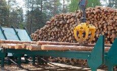 Rīgas meži вышло из убытков и строит новую лесопилку