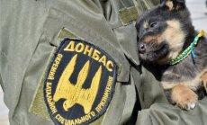 Infografika: Kādi brīvprātīgo bataljoni darbojas Ukrainā?