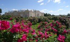 Rundāles pils rožu dārza veidotāju bagātīgā pieredze un padomi karalisko ziedu audzēšanā