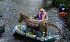 Foto: Raiņi un Aspazijas laivo Gaujā - aizvadīts krāšņs karnevāls uz ūdens 'Es mīlu Tevi tā...'