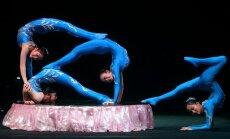 МИД призывает латвийцев не участвовать в цирковом фестивале в Луганске